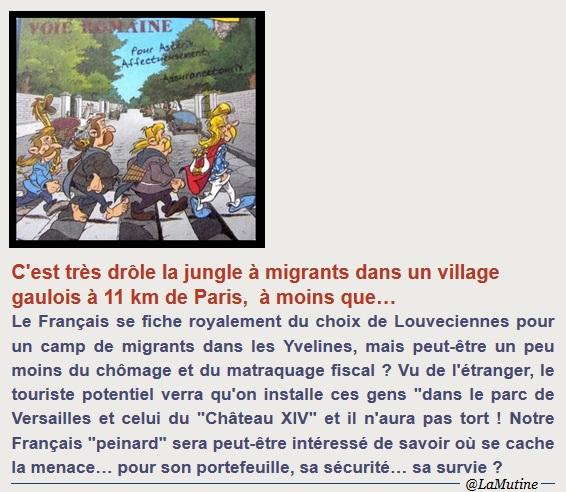 """ALERTE """"C'est très drôle une jungle à migrants dans un village gaulois à 11 km Paris, à moins que… """" Louvec21"""