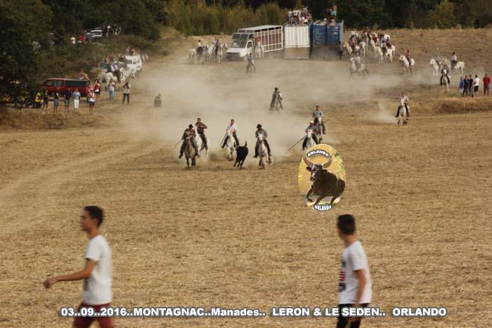 03..09..2016...  Montagnac  Manades  LERON  & LE SEDEN _mg_0012
