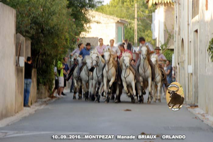 10..09..2016..Montpezat   bandie Manade  Briaux _mg_0020