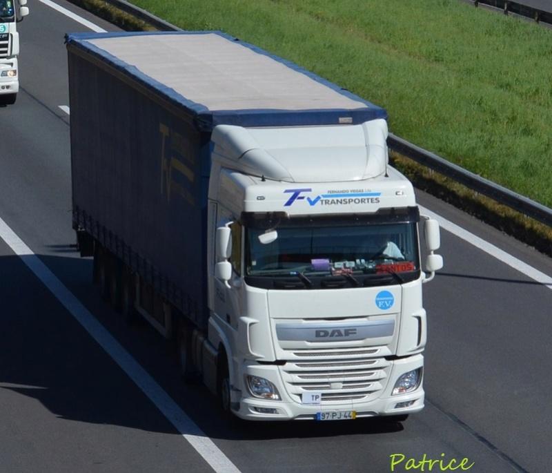 FV Transportes (Fernando Viegas) (Ribamondego Gouveia) 20911