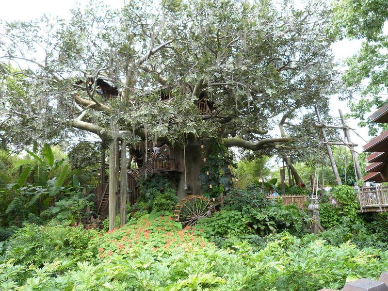 [TR WDW/Universal Floride] Un Voyage de Noce où Sir Tomdelonge mange des burgers et Cata chante (beaucoup) - Septembre 2015 [Màj: 06/11/16] - Page 4 P1060716