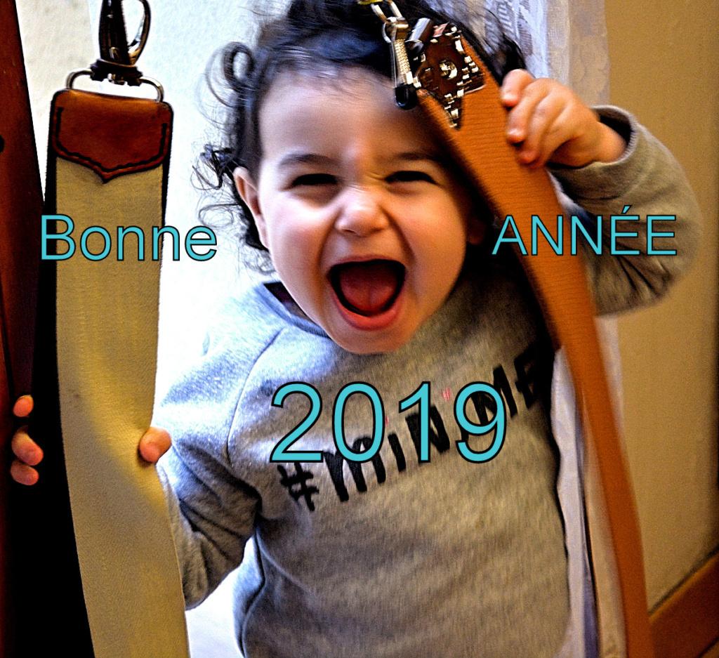 Bonne ANNEE 2019 03-03-10