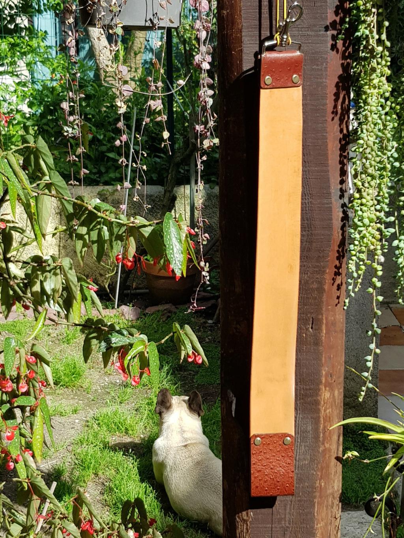 strop en cuir de cheval végétal - Page 4 20200614