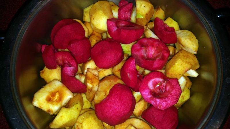 Was für Obstsorten habt Ihr denn im Garten? Aussaat, Spalier, Beerensträucher, Erfahrung und Hilfe :) - Seite 11 20160912