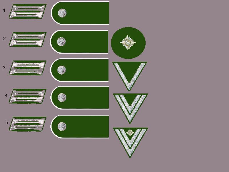 Les grades de l'armée Allemande 28959110