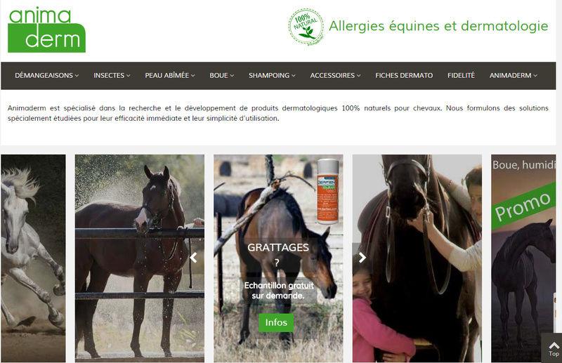 infos Boutiques (Promotions - Nouveautés - etc) Animad10