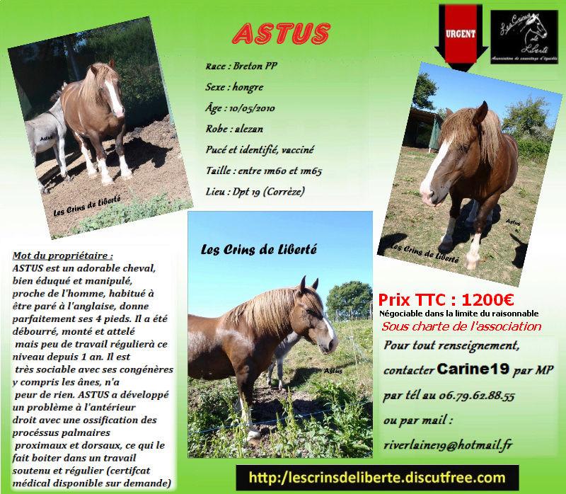 Dept19-6 ans- ASTUS- BRETON PP- adopté par Mélopée (juillet 2017) Astus_12