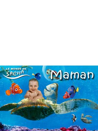 faire part bapteme le monde de nemo, affiche, etiquette porte nom, et carton inviation anniversaire adverger lukas 6ans Maman11