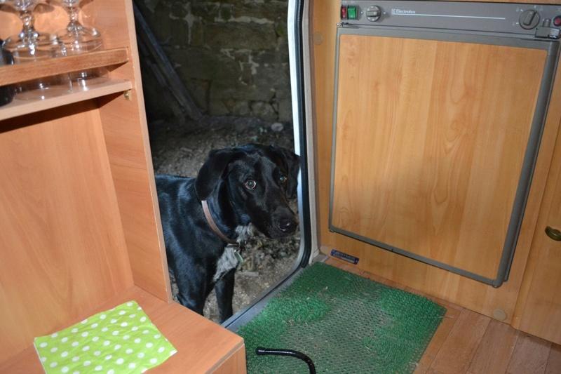 Un sommier maison pour un lit confortable - Page 3 Dsc_0010