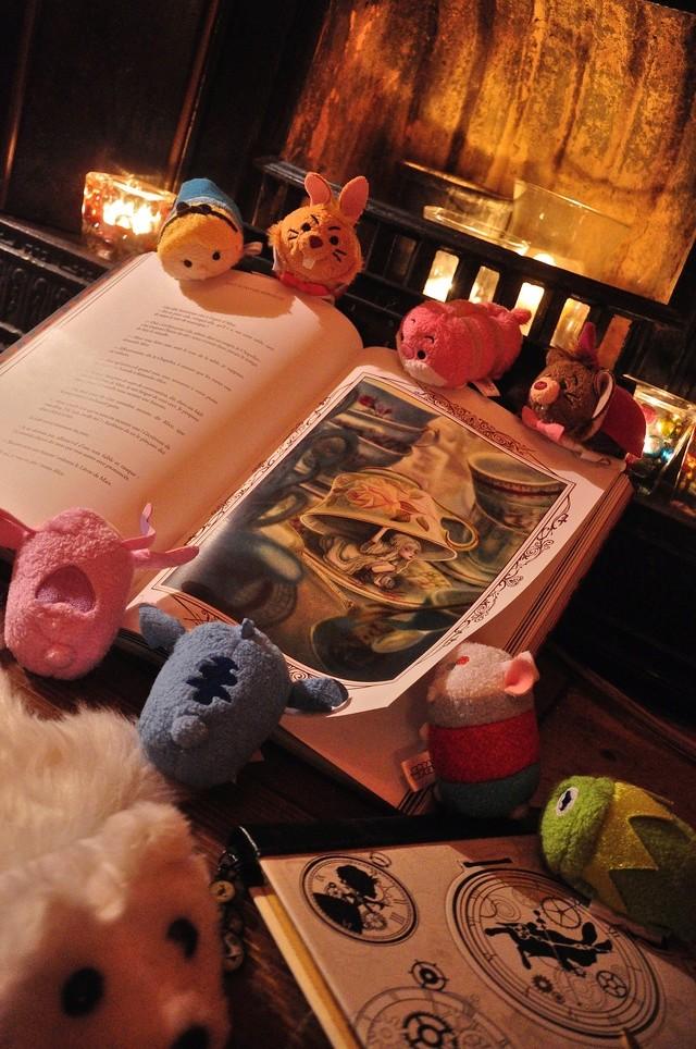 Concours : mettez en scène votre ou vos Tsum-Tsum ! ^^ - Page 15 Dsc_1110