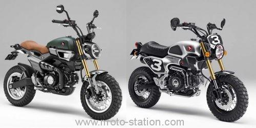Honda va refaire le singe (monkey) au prochain EICMA ? - Et pas que ! Honda-14
