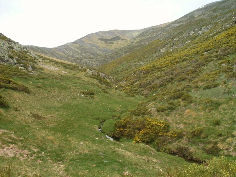 La leyenda del carretero de Llanaves (Montaña Palentina) Img-2010