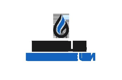 Wells Petroleum Wellsp10