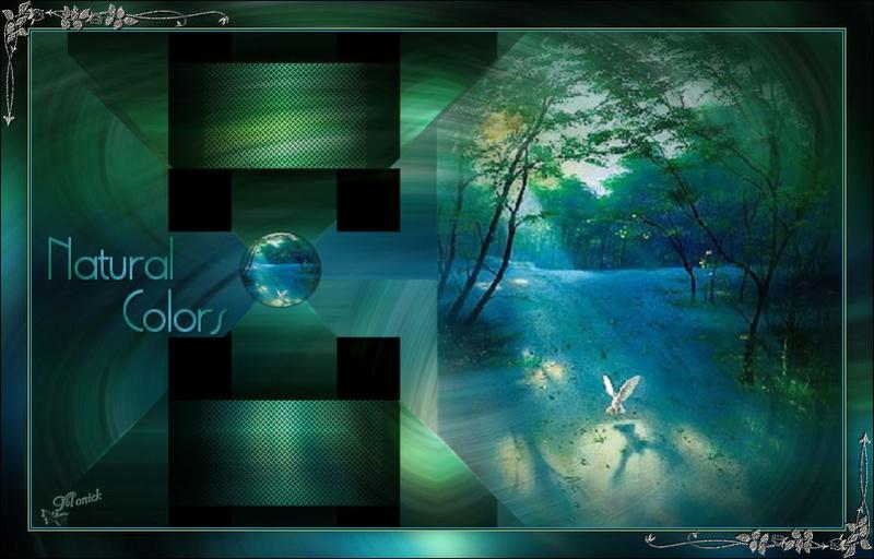 Natural_Colors (Psp) Nature10