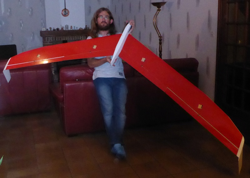 aile volante Taborca en 3m P1010310