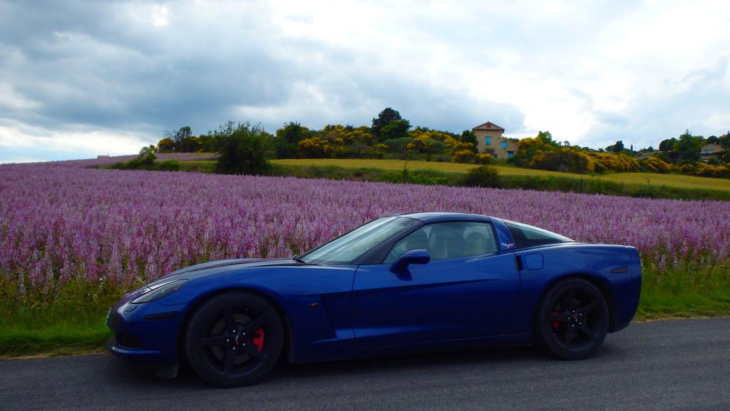 Le Verdon en Corvette c'est le top ! P6110110