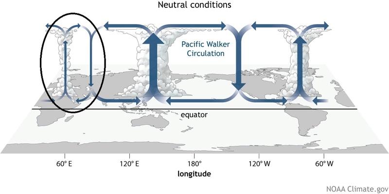 Fundamental Pattern Change on the Wind:  Walker11