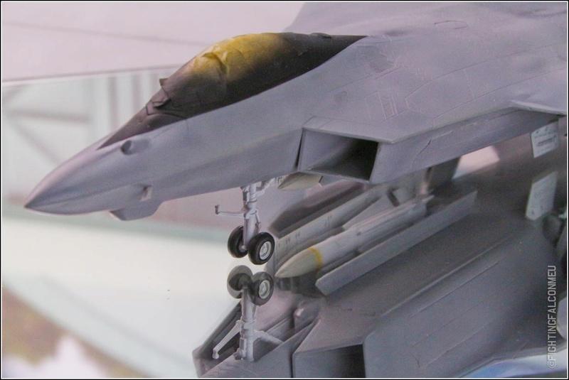 F22 Sea Raptor Img_9810