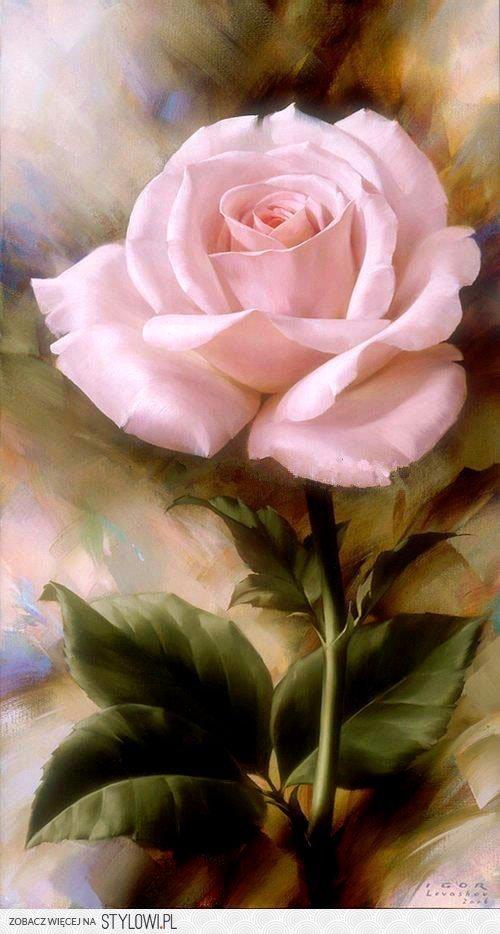 Le doux parfum des roses - Page 3 A_0248