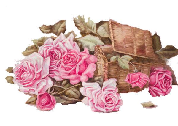 Le doux parfum des roses C4cffa11