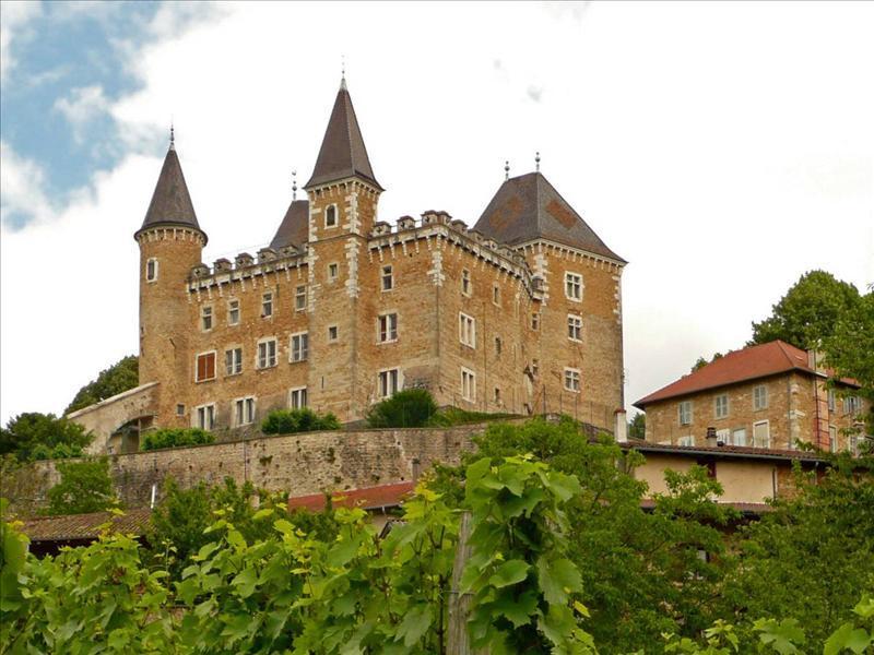 Les châteaux. - Page 2 Chatea10