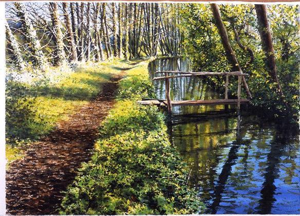 L'eau paisible des ruisseaux et petites rivières  - Page 4 Eau_d12