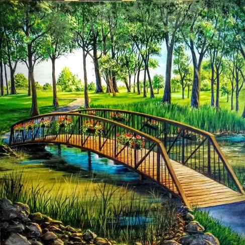 L'eau paisible des ruisseaux et petites rivières  - Page 4 Eau_t12