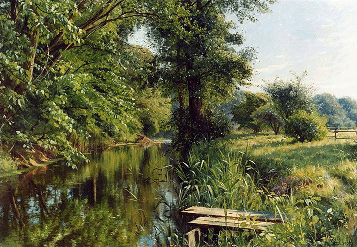 L'eau paisible des ruisseaux et petites rivières  - Page 5 Eau_zz11