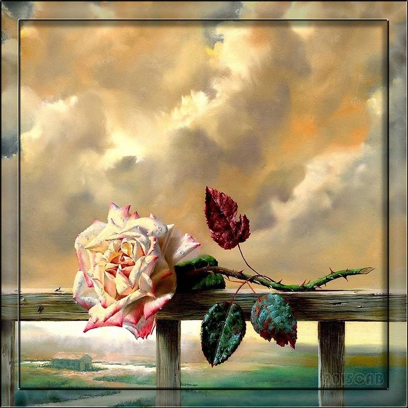 Le doux parfum des roses - Page 2 Ro13