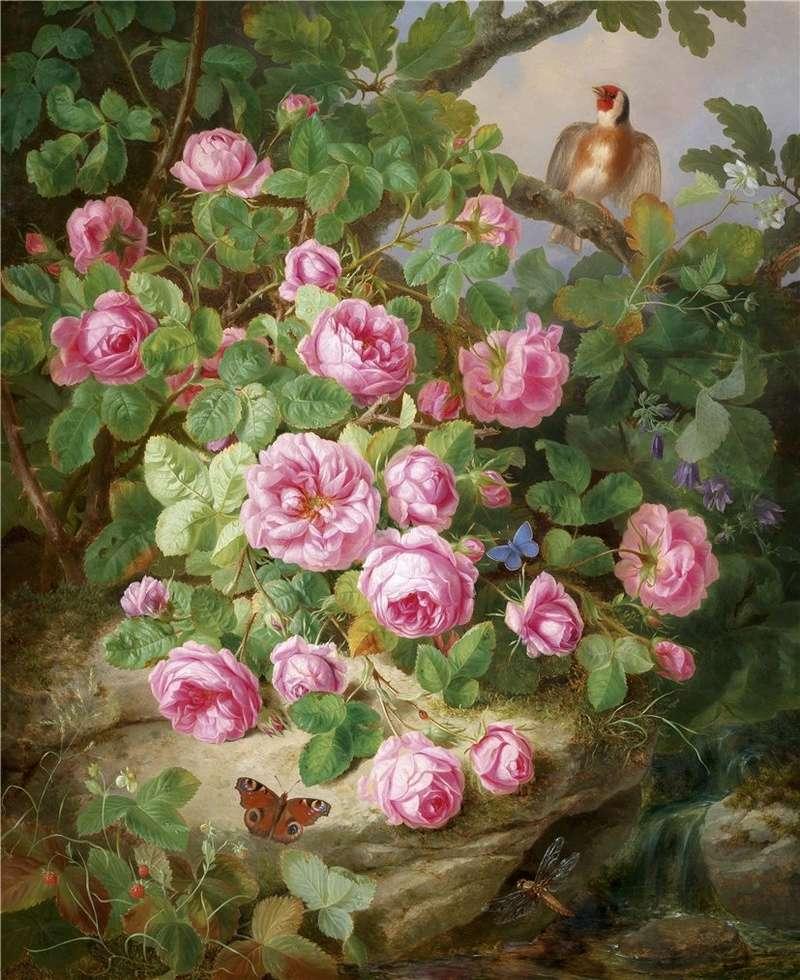 Le doux parfum des roses Ro_a10