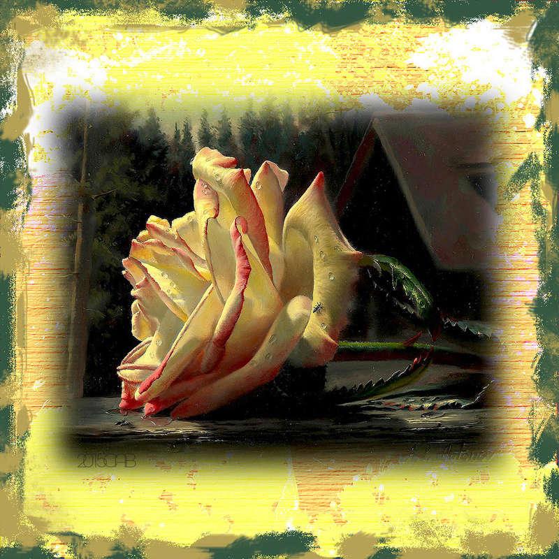 Le doux parfum des roses - Page 2 Ro_a12
