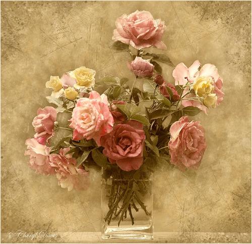 Le doux parfum des roses - Page 2 Ros10