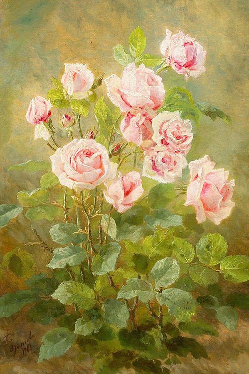 Le doux parfum des roses Ros_e10