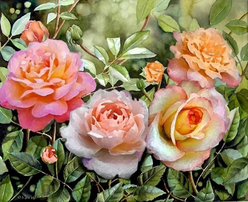 Le doux parfum des roses Waterc10