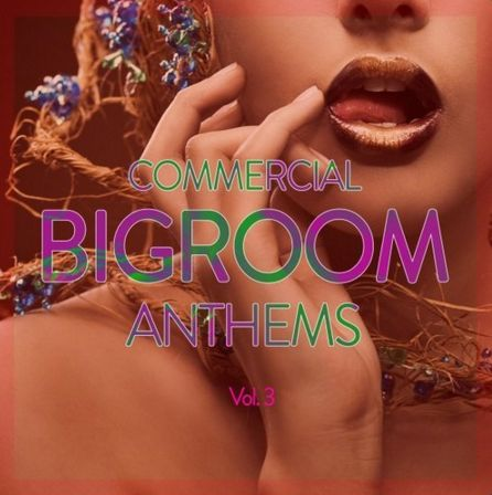COMMERCIAL BIGROOM ANTHEMS, VOL. 3  Captur15