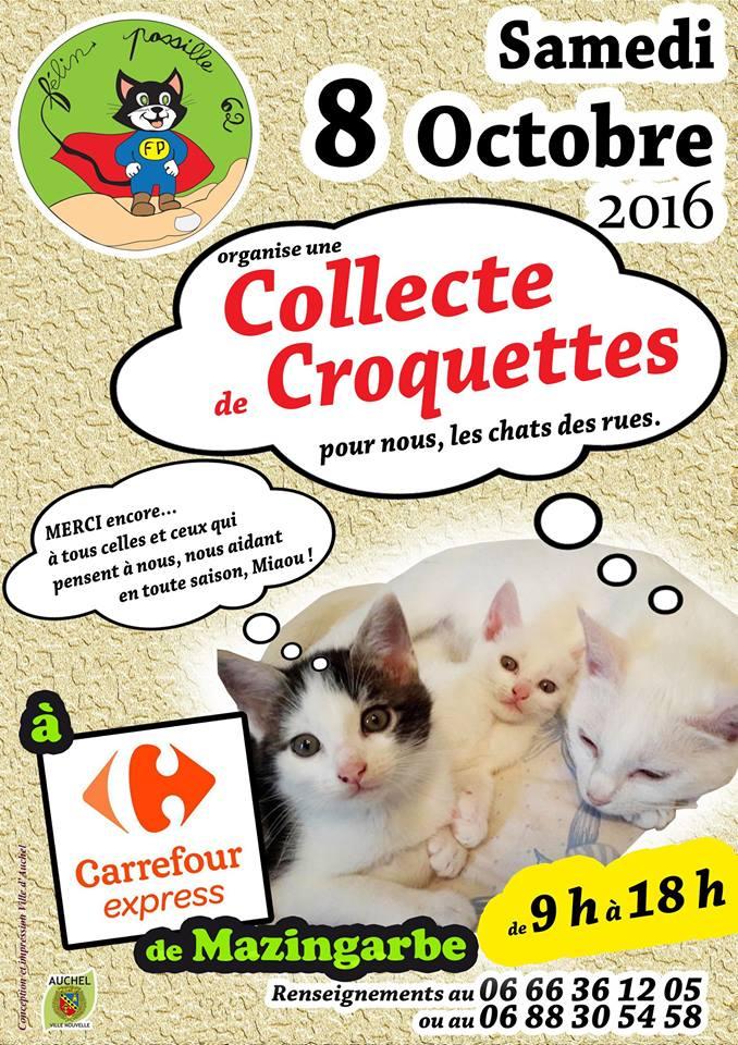 Collecte de croquettes le 8 octobre à Mazingarbe 14233210