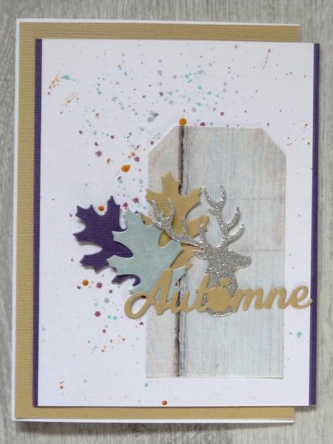 Combo couleurs d'Octobre Dsc02516