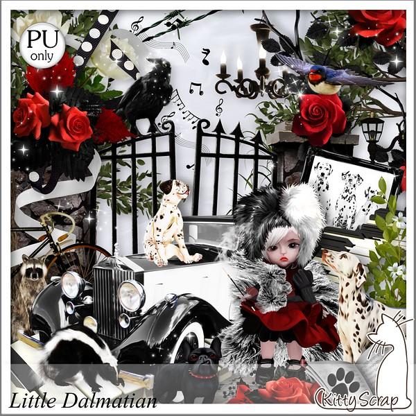Little Dalmatian Kittys12