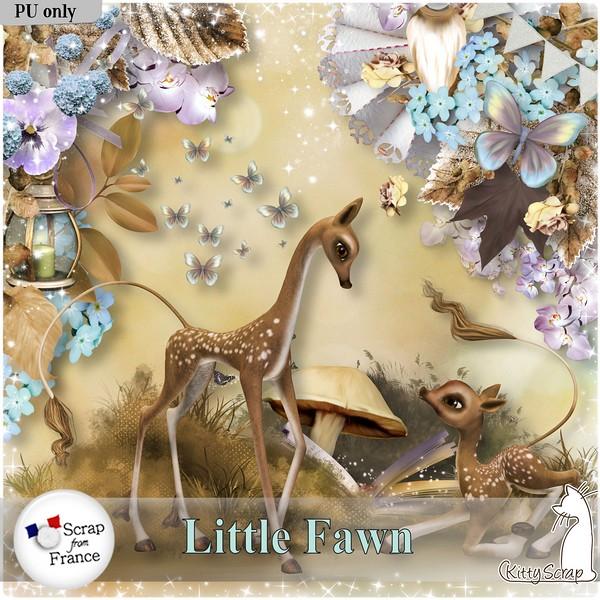 Little Fawn Kittys14