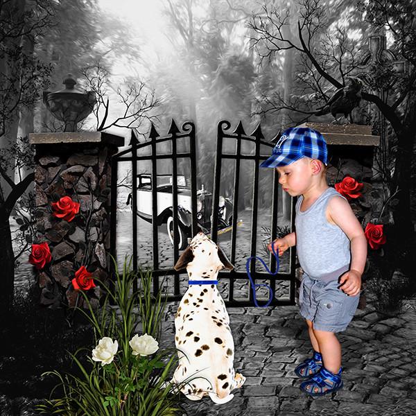 Little Dalmatian Little11