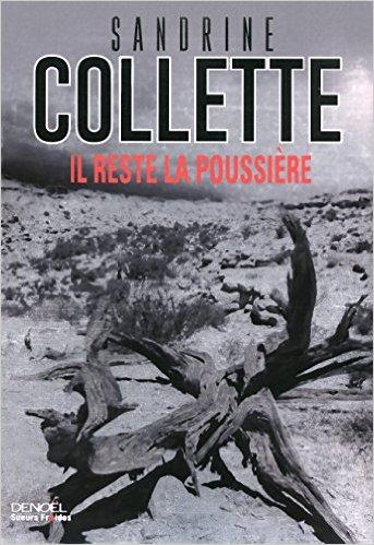 [Collette, Sandrine] Il reste la poussière 51-ltq10