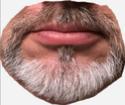 Beards, Facial Hair Dc_z_b10