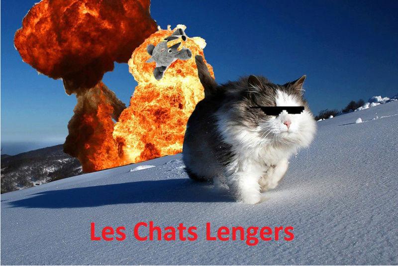 Tournoi Interligues Chat_l10