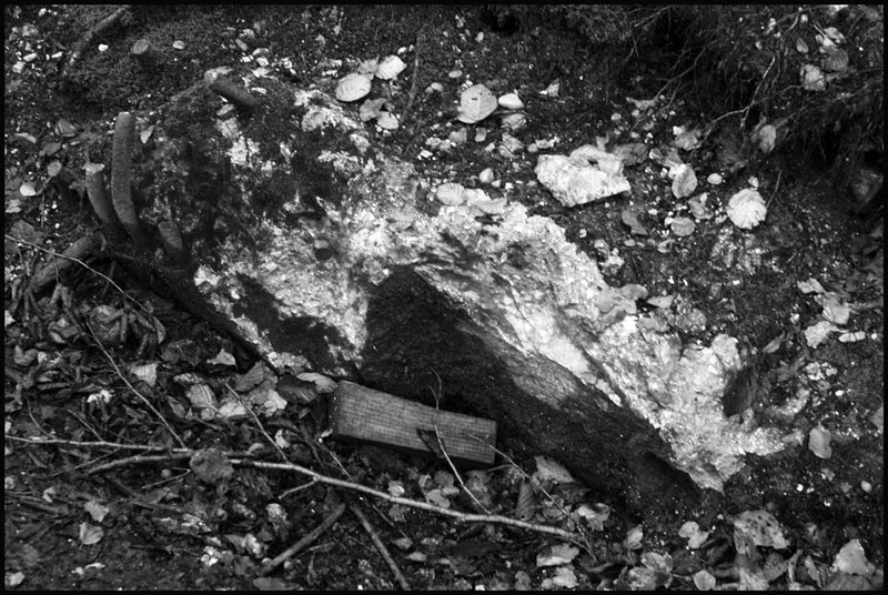 souvenirs du Berghof.. Ha0_2311