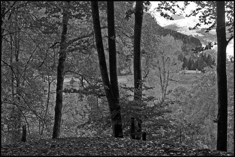 souvenirs du Berghof.. Ha0_2312