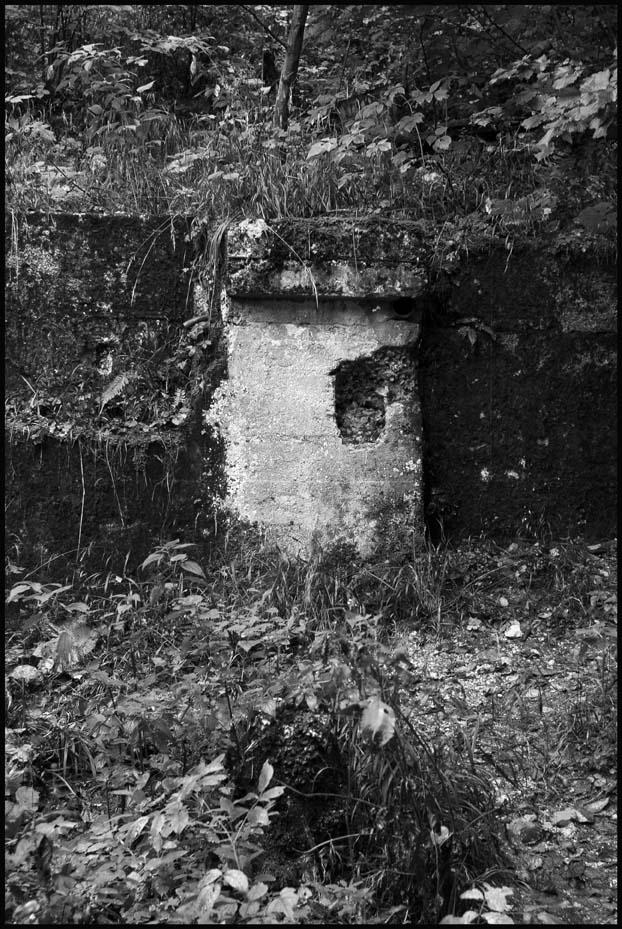 souvenirs du Berghof.. Ha0_2313