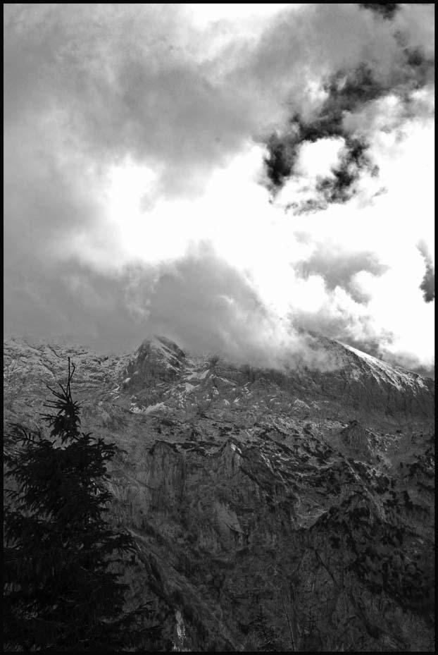 souvenirs du Berghof.. - Page 2 Ha0_2416