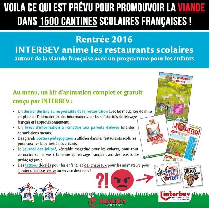 """L'association interprofessionnelle """"bétail et viande"""" dans les écoles...  - Page 2 Viandy11"""