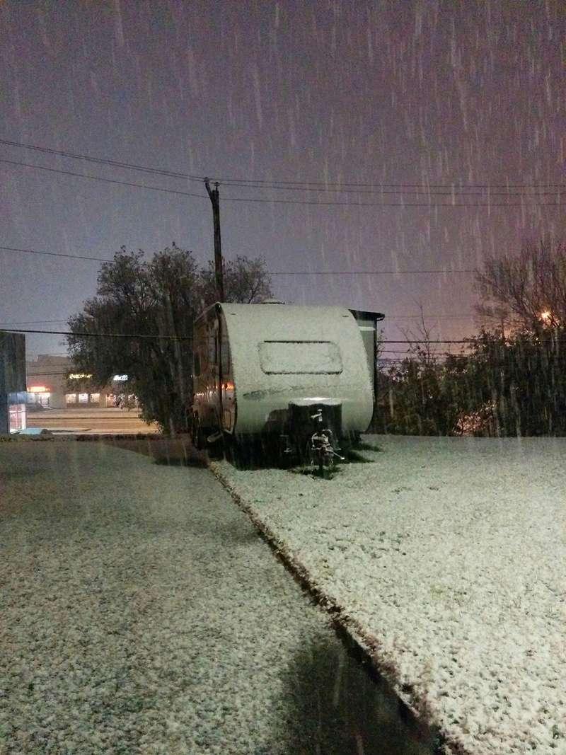 Max sous la neige ! 14859510