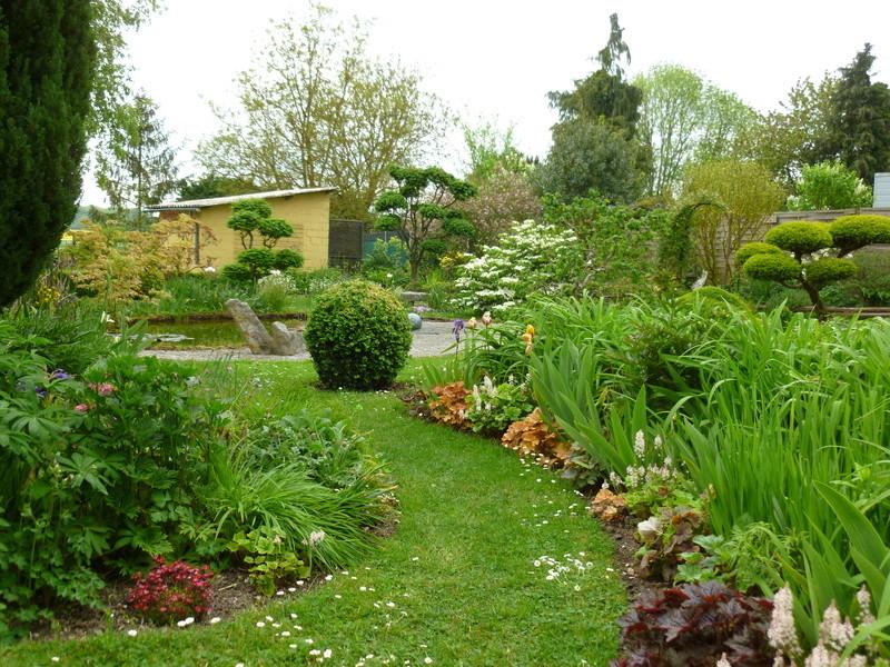 Jardin Zen pour néophyte P1000010